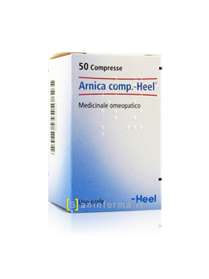 Arnica comp.-Heel