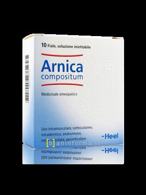 Arnica Compositum Heel Fiale