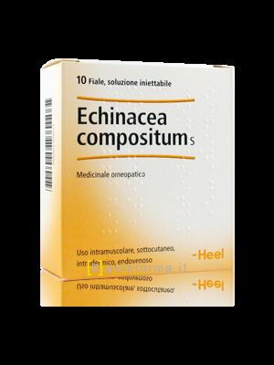 Echinacea Compositum s Heel