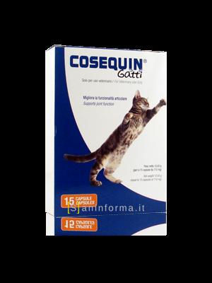 Cosequin Gatti