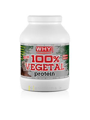 Why Sport 100% Vegetal Protein Gusto Cacao