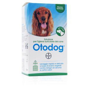 Otodog