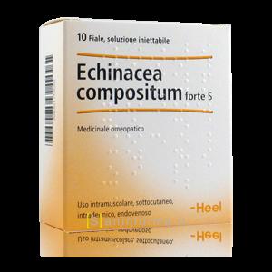 Echinacea Compositum Forte