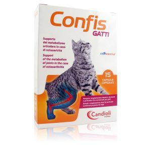 Confis Gatti