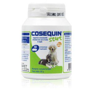 Cosequin Start Cane